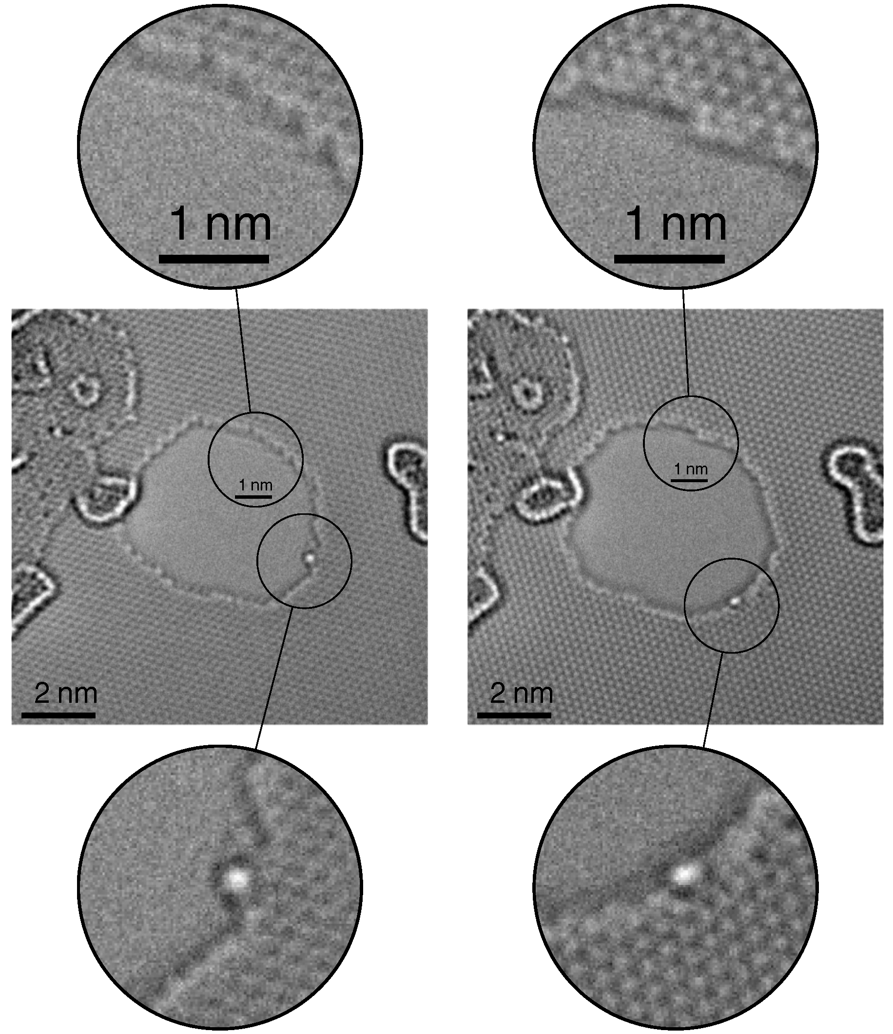image of graphene at the edge and with adatoms at 20 kV with SALVE III